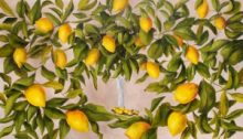 Previously| Liza Krügermeier & Helle Høyer | Where the Lemons Grow